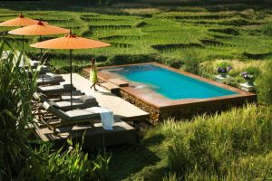 Four Seasons Chang Mai Launches 'Glorious Green Season' Wellness Packages