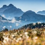Forest Breathing in the Dolomites At Rosa Alpina - Led By Ayurvedic Exponent Dr Suraj Dubey