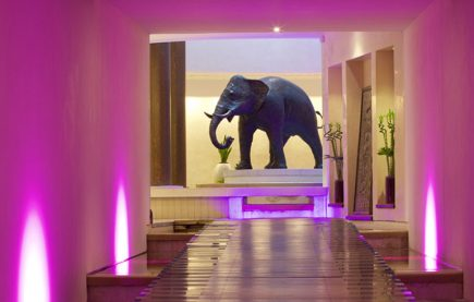 The five star spa at Seaham Hall launches Cancer Touch Therapy