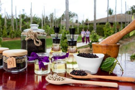 Fusion Resort Phu Quoc, Phu Quoc, Vietnam - Recommended Treatment: Pepperation